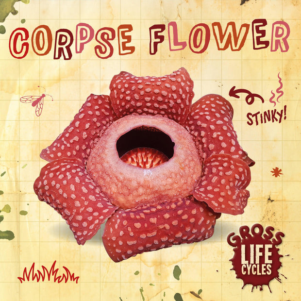 Gross Life Cycles: Corpse Flower