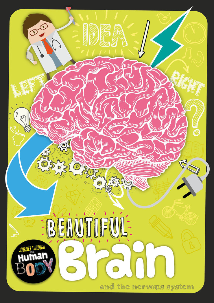 Journey Through The Human Body: Beautiful Brain | Children's Books | Non-Fiction Books | BookLife Publishing Ltd