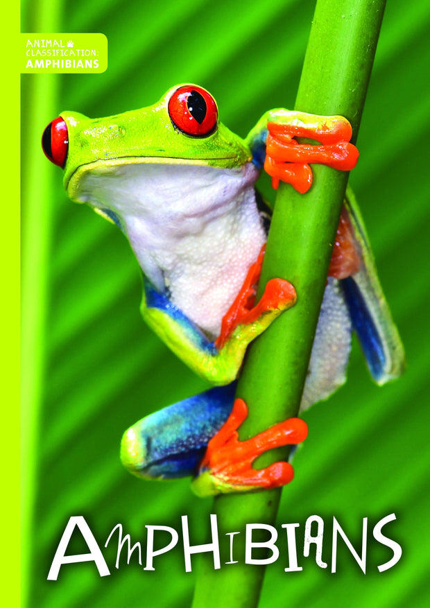 Animal Classification: Amphibians | Children's Books | Non-Fiction Books | BookLife Publishing Ltd