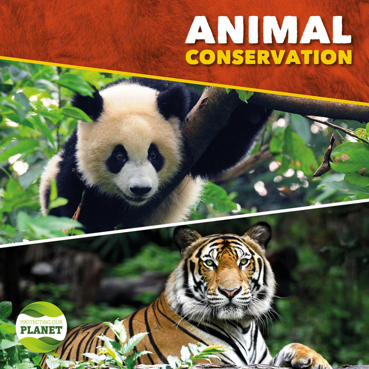 Protecting Our Planet: Animal Conservation | Children's Books | Non-Fiction Books | BookLife Publishing Ltd