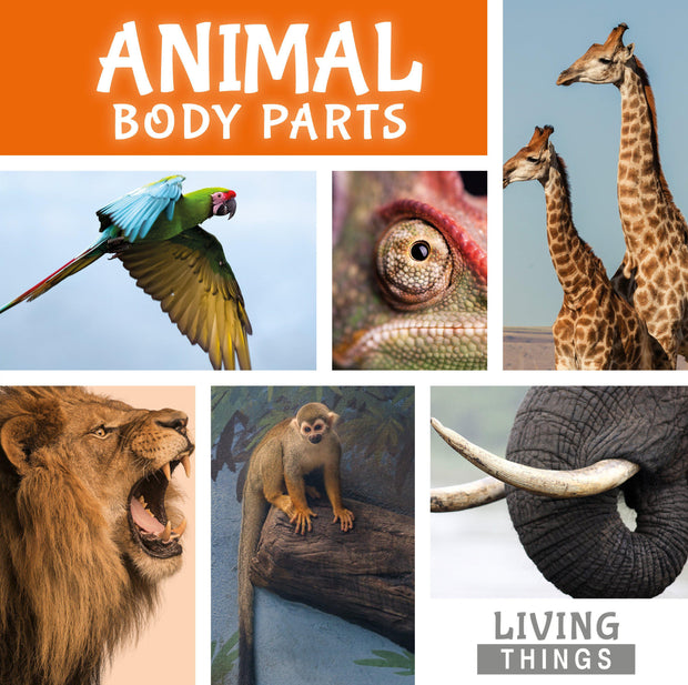 Living Things: Animal Body Parts | Children's Books | Non-Fiction Books | BookLife Publishing Ltd