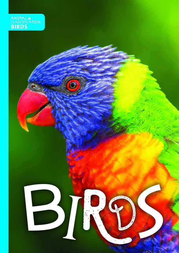 Animal Classification: Birds | Children's Books | Non-Fiction Books | BookLife Publishing Ltd