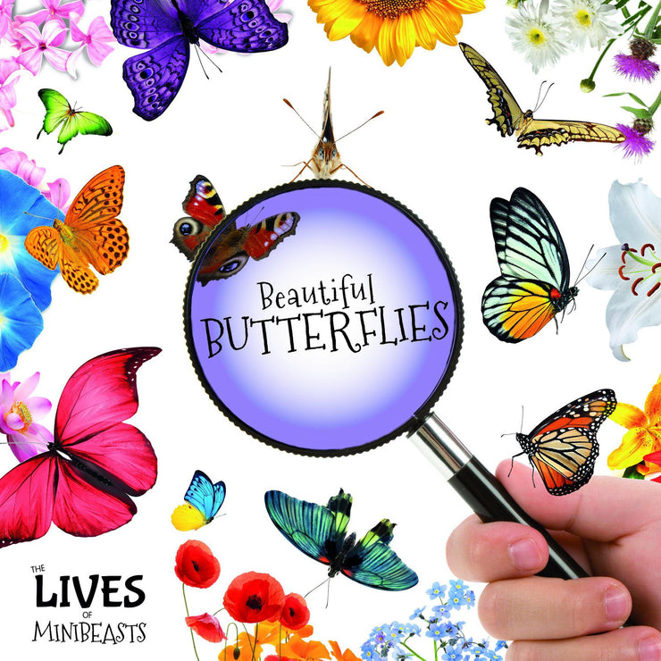 The Lives Of Minibeasts: Butterflies