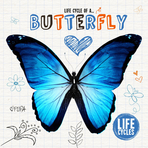 Life Cycles: Life Cycle of a Butterfly | Children's Books | Non-Fiction Books | BookLife Publishing Ltd