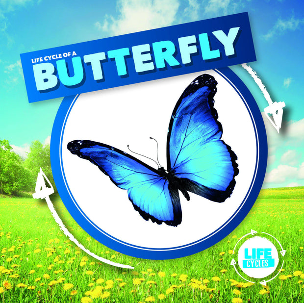 Life Cycle of a Butterfly | Children's Books | Non-Fiction Books | BookLife Publishing Ltd