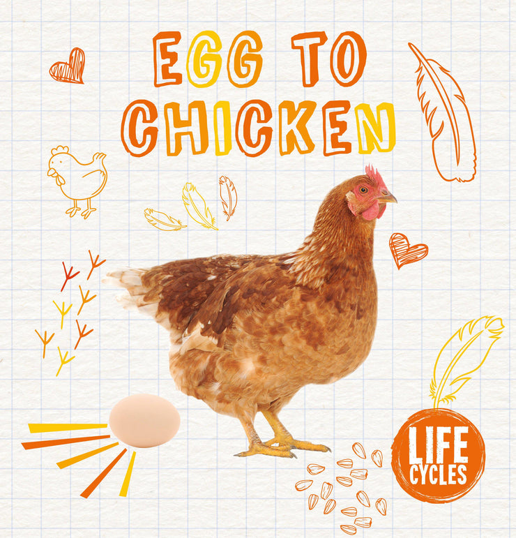 Life Cycles: Egg To Chicken | Children's Books | Non-Fiction Books | BookLife Publishing Ltd