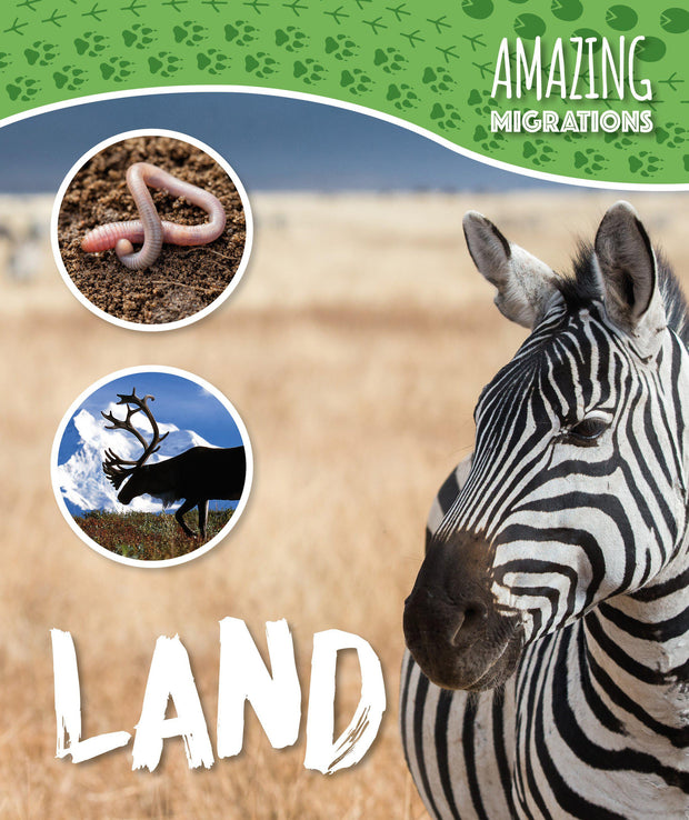 Amazing Migrations: Land | Children's Books | Non-Fiction Books | BookLife Publishing Ltd