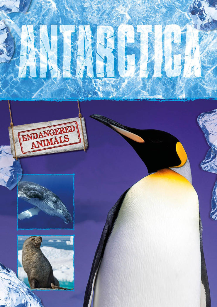 Endangered Animals: Antarctica | Children's Books | Non-Fiction Books | BookLife Publishing Ltd