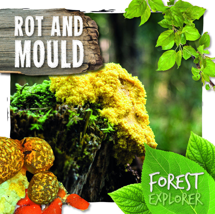 Forest Explorer: Rot and Mould | Children's Books | Non-Fiction Books | BookLife Publishing Ltd