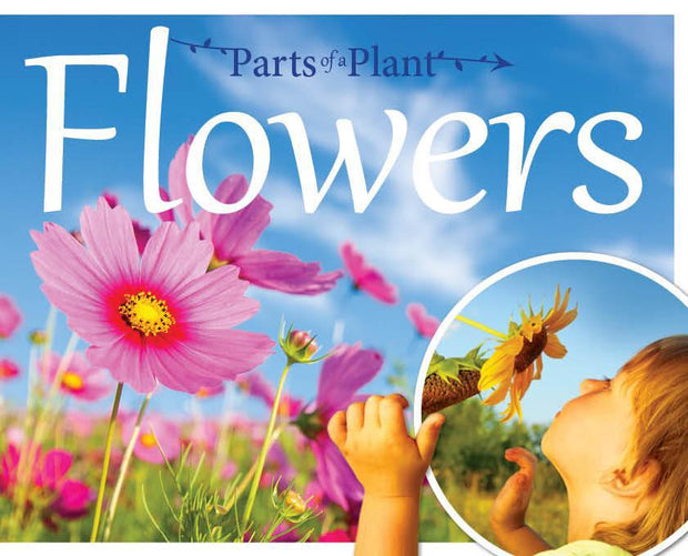 The Parts of a Plant: Flowers | Children's Books | Non-Fiction Books | BookLife Publishing Ltd