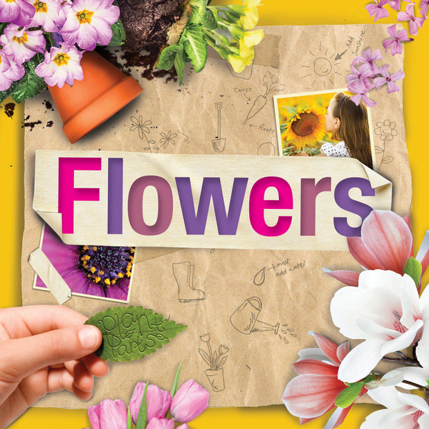 Plant Parts: Flowers | Children's Books | Non-Fiction Books | BookLife Publishing Ltd