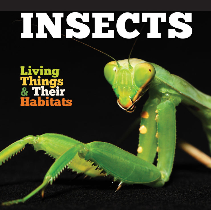 Living Things and Their Habitats: Insects | Children's Books | Non-Fiction Books | BookLife Publishing Ltd