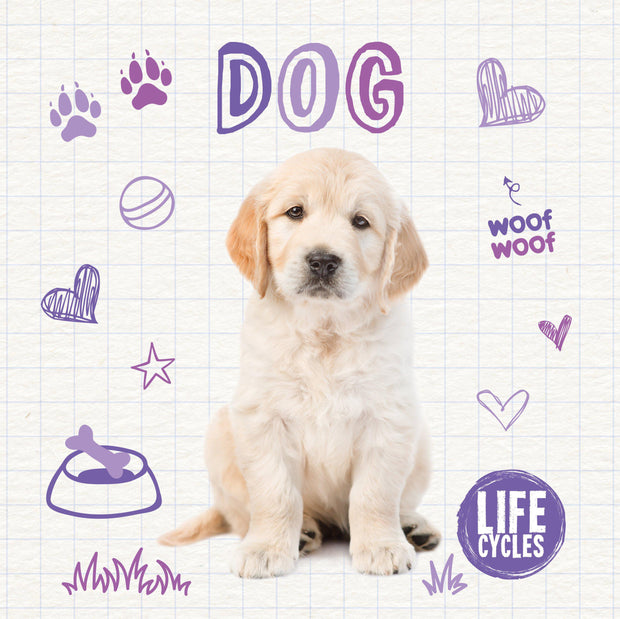 Life Cycles: Dog | Children's Books | Non-Fiction Books | BookLife Publishing Ltd