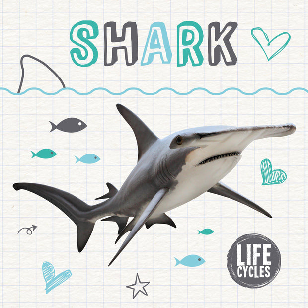 Life Cycles: Shark | Children's Books | Non-Fiction Books | BookLife Publishing Ltd