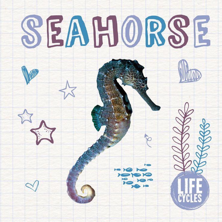 Life Cycles: Seahorse | Children's Books | Non-Fiction Books | BookLife Publishing Ltd