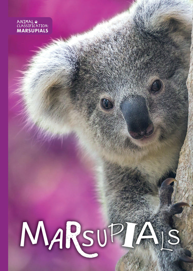 Animal Classification: Marsupials | Children's Books | Non-Fiction Books | BookLife Publishing Ltd