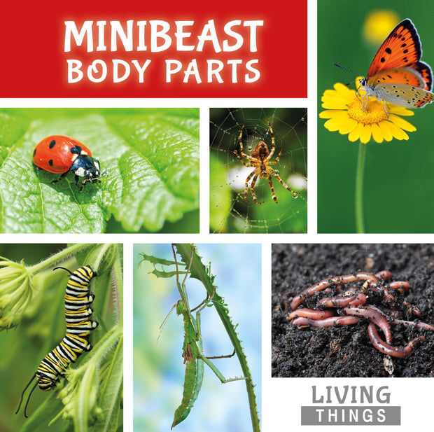 Living Things: Minibeast Body Parts | Children's Books | Non-Fiction Books | BookLife Publishing Ltd