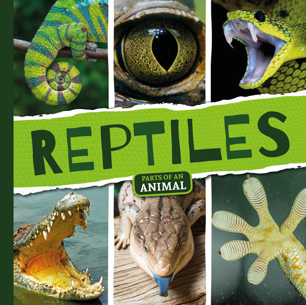 Parts of an Animal: Reptiles | Children's Books | Non-Fiction Books | BookLife Publishing Ltd