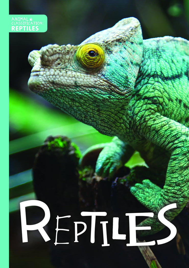 Animal Classification: Reptiles | Children's Books | Non-Fiction Books | BookLife Publishing Ltd