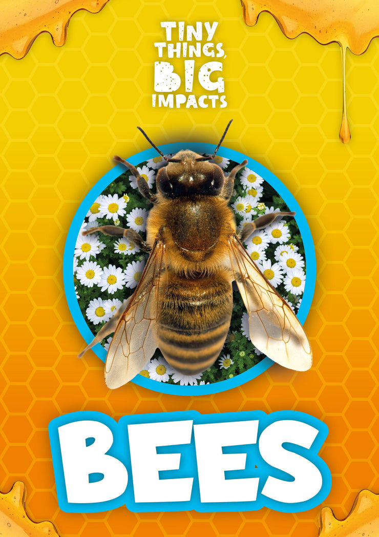 Tiny Things, Big Impacts: Bees | Children's Books | Non-Fiction Books | BookLife Publishing Ltd