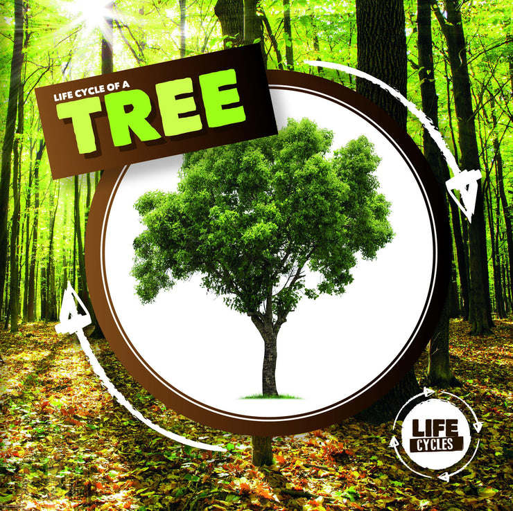 Life Cycle of a Tree | Children's Books | Non-Fiction Books | BookLife Publishing Ltd