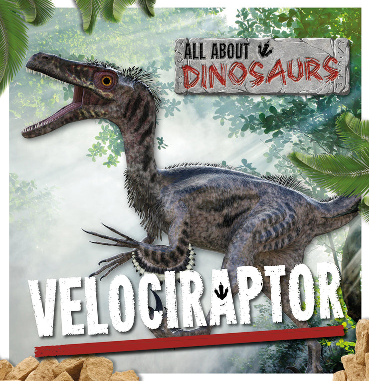 All About Dinosaurs: Velociraptor | Children's Books | Non-Fiction Books | BookLife Publishing Ltd