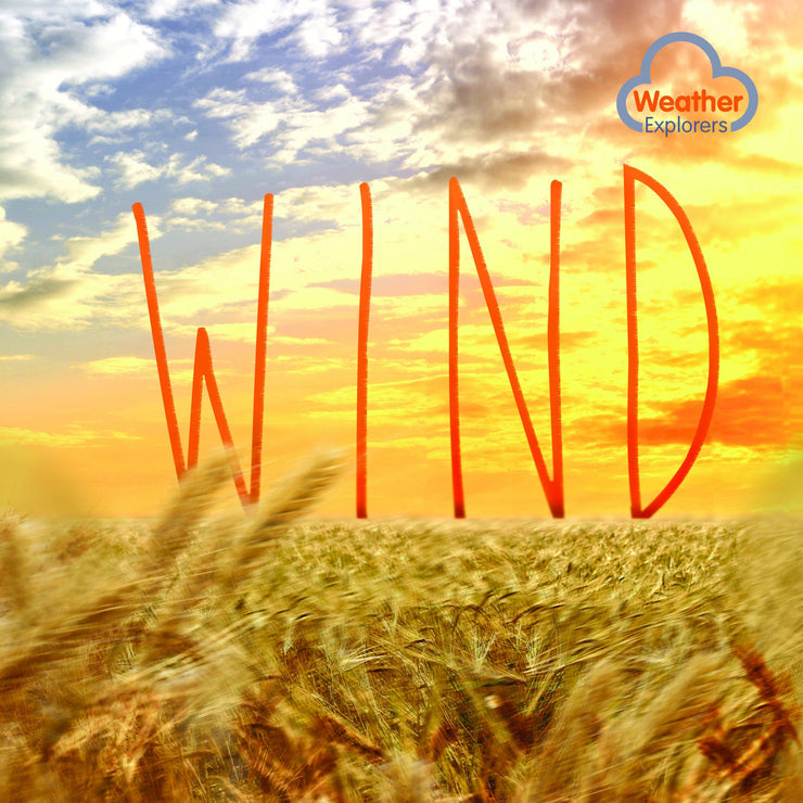 Weather Explorers: Wind | Children's Books | Non-Fiction Books | BookLife Publishing Ltd