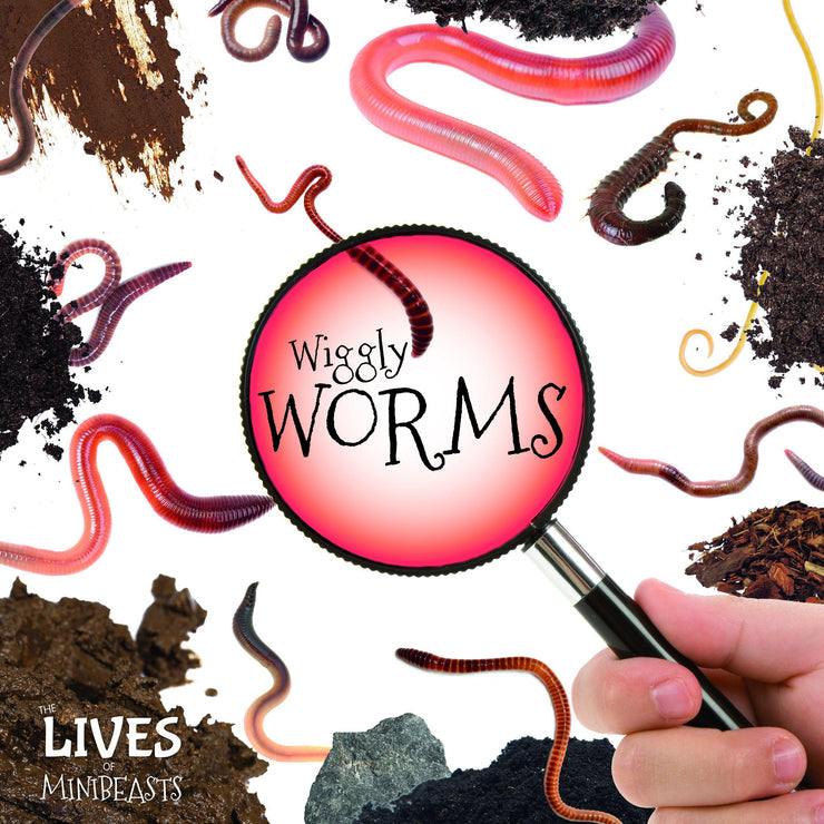 The Lives Of Minibeasts: Worms | Children's Books | Non-Fiction Books | BookLife Publishing Ltd