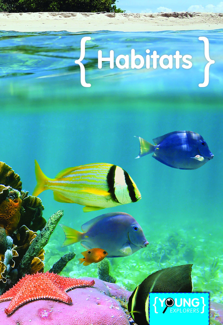 Young Explorers: Habitats | Children's Books | Non-Fiction Books | BookLife Publishing Ltd