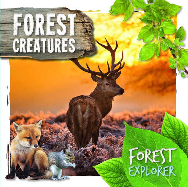 Forest Explorer: Forest Creatures | Children's Books | Non-Fiction Books | BookLife Publishing Ltd