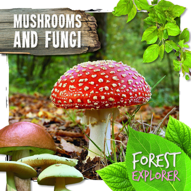 Forest Explorer: Mushrooms and Fungi | Children's Books | Non-Fiction Books | BookLife Publishing Ltd