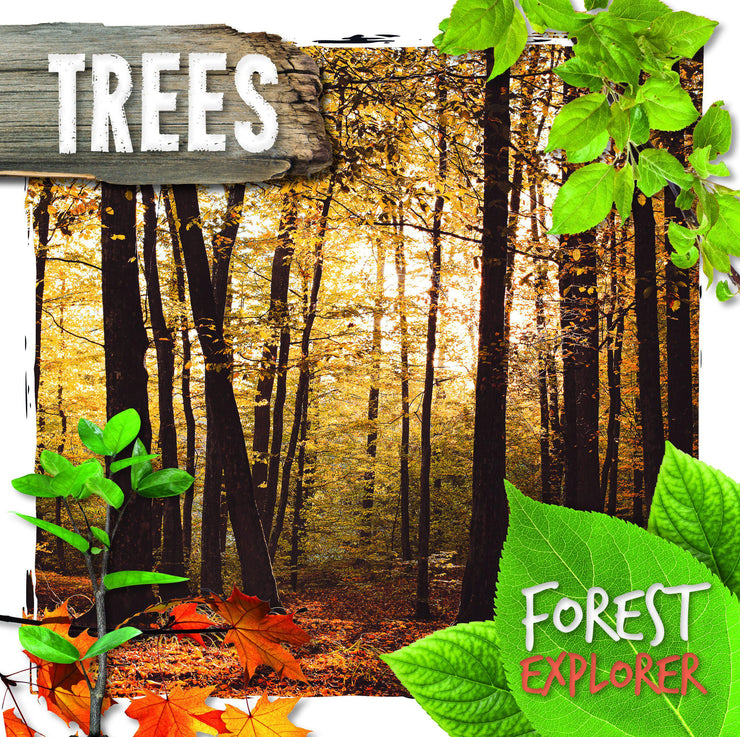 Forest Explorer: Trees | Children's Books | Non-Fiction Books | BookLife Publishing Ltd