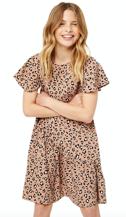 Leopard Swing Dress