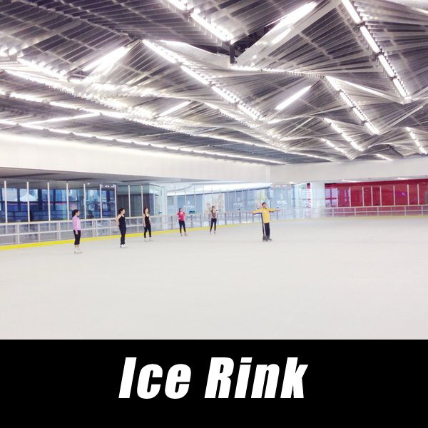 Ice Rink installation, Ice Rink repair