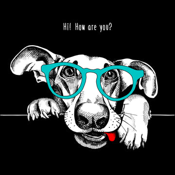 Hip Hop T-Shirt Dog with the Glasses Black Tank Top