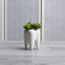 Load image into Gallery viewer, Tooth Shape White Ceramic Flower Pot - Seasons Forever