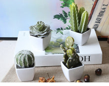 Load image into Gallery viewer, Mini Potted Succulents Cactus 4 piece set - Seasons Forever