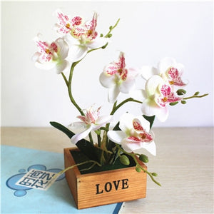 Reat to Touch Artificial Butterfly Orchid Potted Plant with Wooden Vase - Seasons Forever
