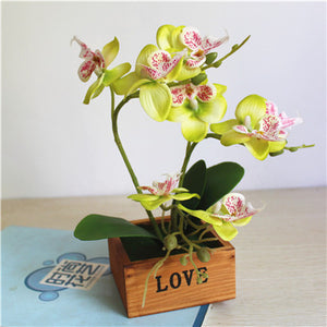 Real to Touch Artificial Butterfly Orchid Potted Plant with Wooden Vase - Seasons Forever
