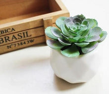 Load image into Gallery viewer, Artificial Multilayer Succulent Plant - Seasons Forever