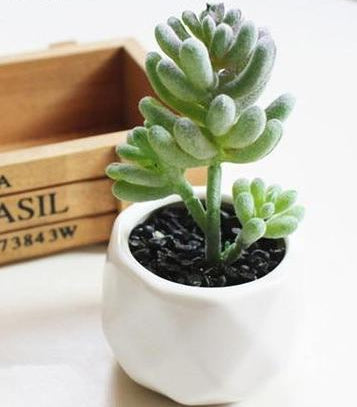 Artificial Multilayer Succulent Plant - Seasons Forever