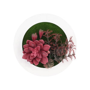 3D Circular Simulation Succulent Wall-Mounted Artificial Plant - Seasons Forever