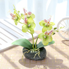 Load image into Gallery viewer, Stone Artificial Butterfly Orchid Silk Flowers - Seasons Forever