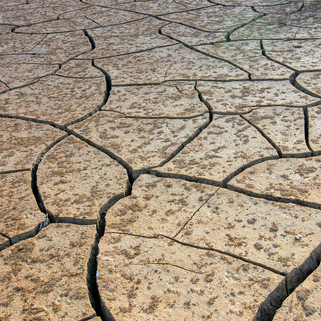 Drought The first major challenge against climate change