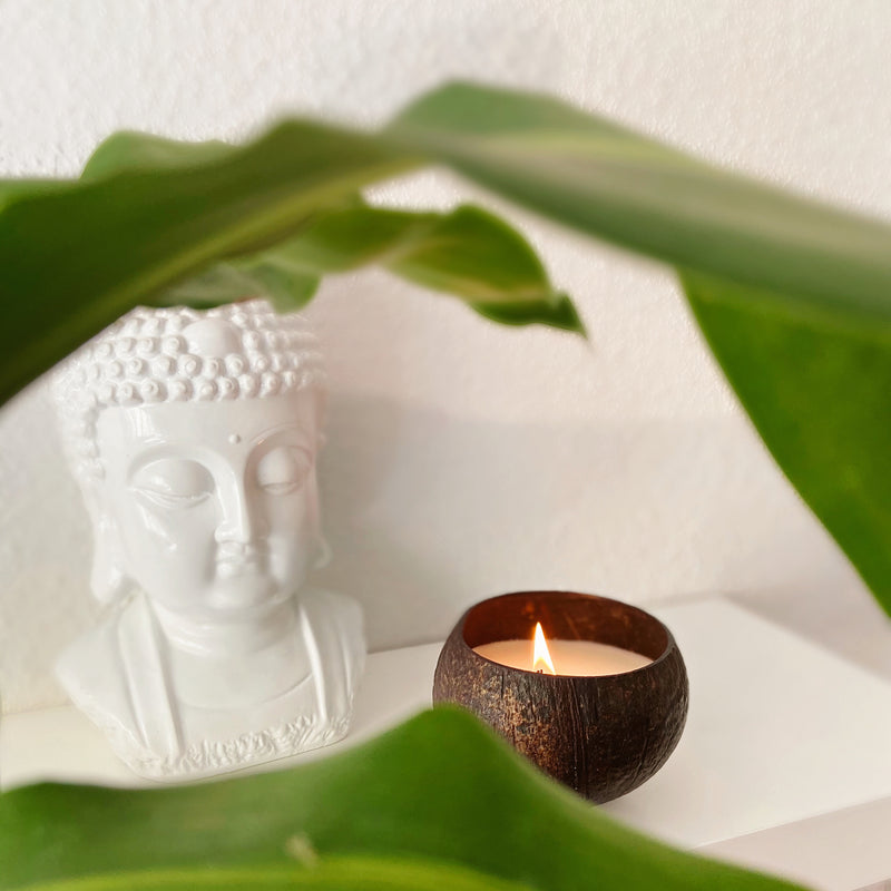 Organic coconut candle