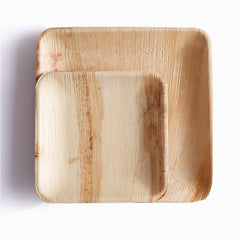 25 square palm leaf plates - PACKAWIN