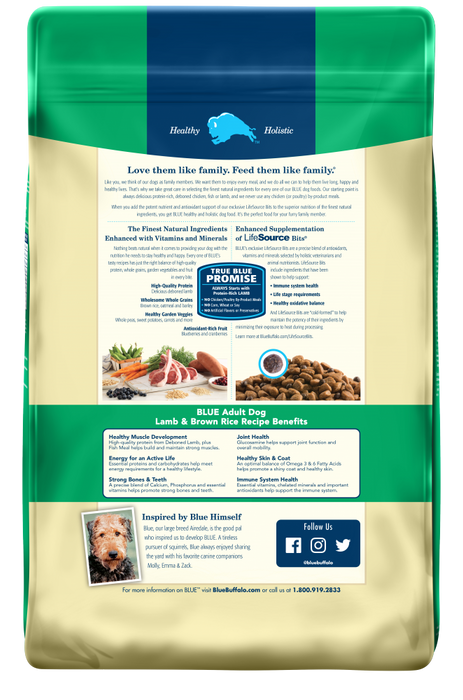 Blue Buffalo Life Protection Natural Lamb & Brown Rice Recipe Adult Dry Dog Food