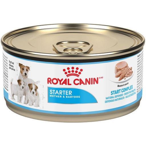 Royal Canin Starter Mother & Babydog Mousse Canned Dog Food