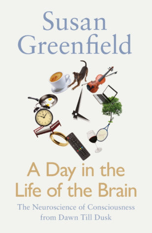 A Day in the Life of the Brain (Hard Back)
