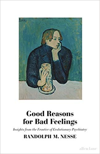 Good Reasons for Bad Feelings: Insights from the Frontier of Evolutionary Psychiatry (Hard Back)